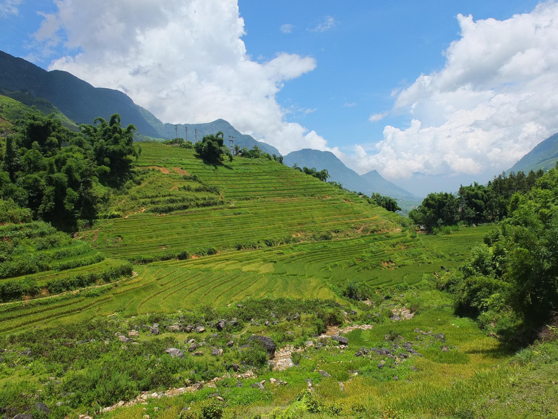 サパ(ベトナム北部)で少数民族の村をめぐるトレッキングツアー
